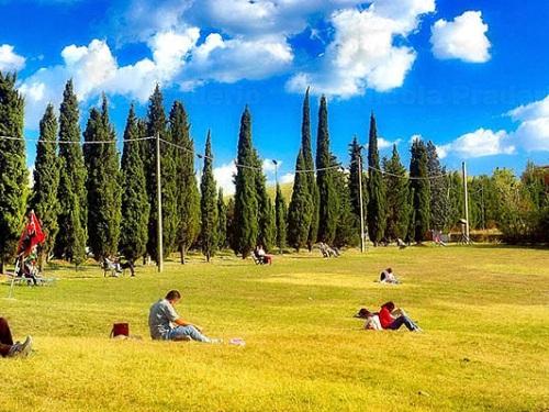 Parco Cavajoni